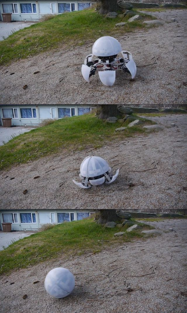 WHO KEEPS BUILDING THESE THINGS?: Creepy Hexapod Robot Can Transform, Roll Out I...