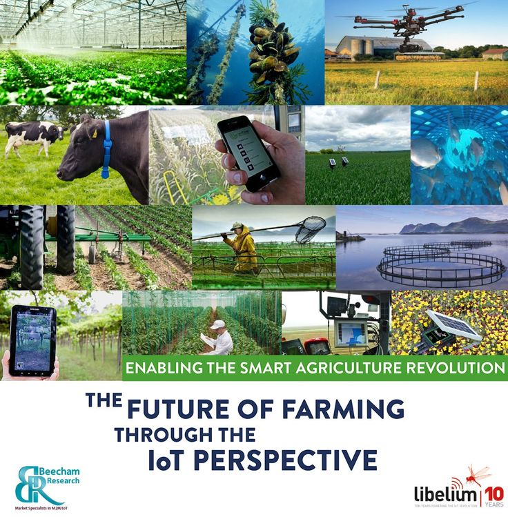 Enabling Smart Agriculture Through the IoT Perspective