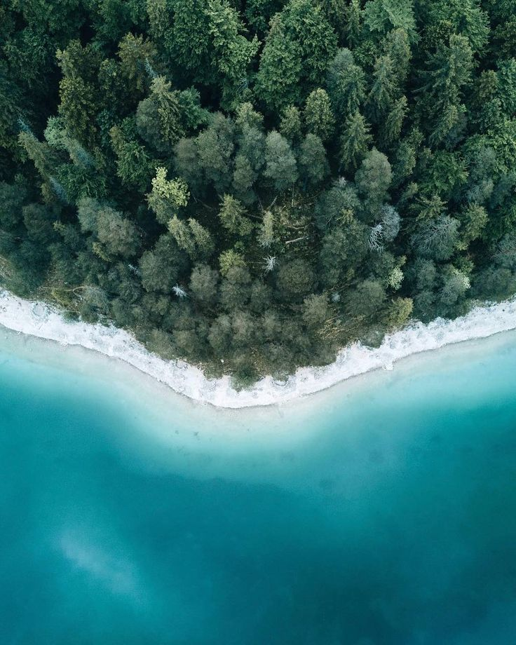 Landscape Drone Photography : Yesterday I droned around some trees and a pond. I...