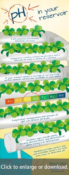 Did you know that the pH in your hydroponic system is just as important as your ...