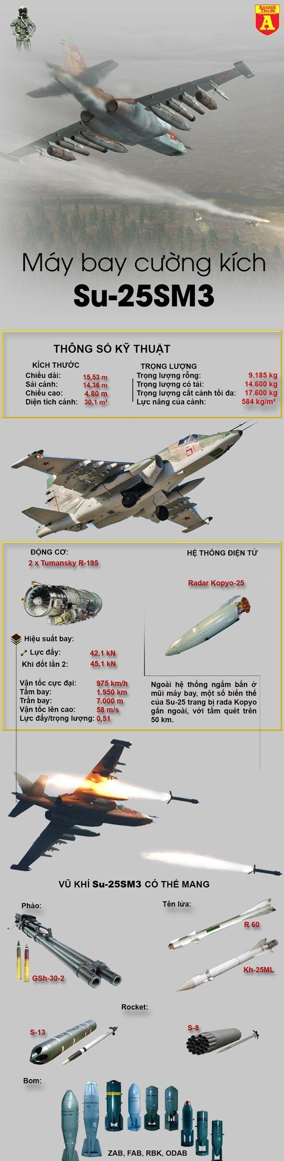 Sức mạnh của cường kích sát thủ Su-25SM3.