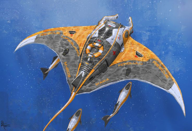 CrazyAsian1, Manta Rescue Drone