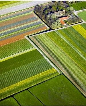 Aerial Photography - amazing straight lines