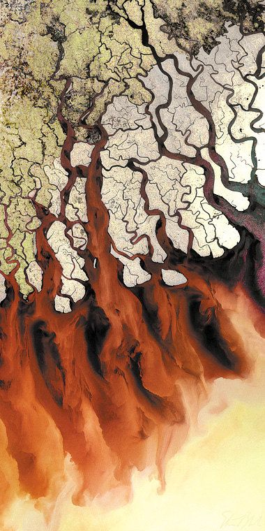 GANGES RIVER DELTA (India): Print only and ready to hang pieces of