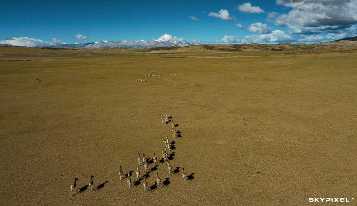 Award Announcement: Mavic 2 Aerial Photography Contest