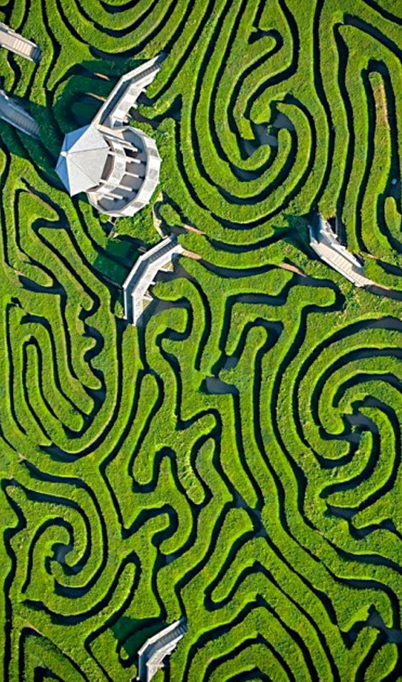 Maze at Langleat Manor, England. Follow my pinterest: rckeyru #rckeyru #rckey #r...