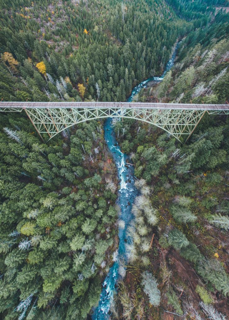 Verde Speranza - northwezt:   Vance Creek Bridge (Nov. 4, 2015)