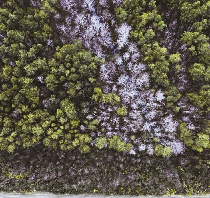 Incredible Drone Photography