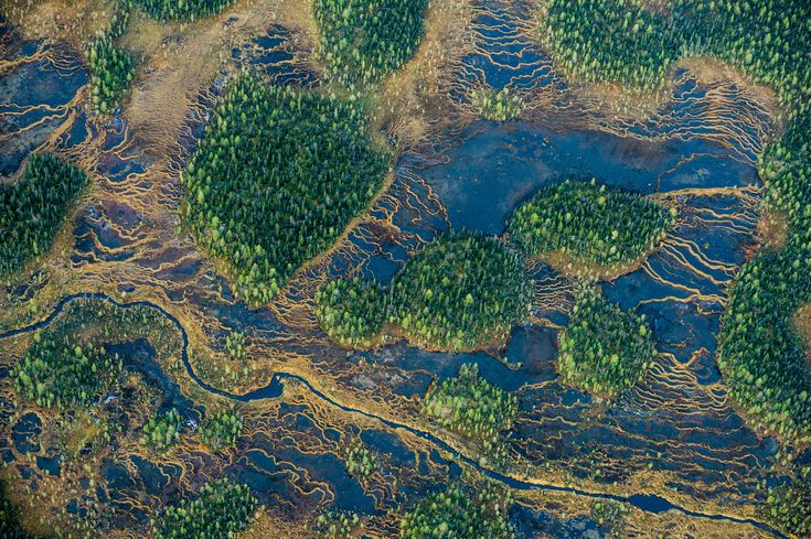 A landscape in Swedish Laponia.