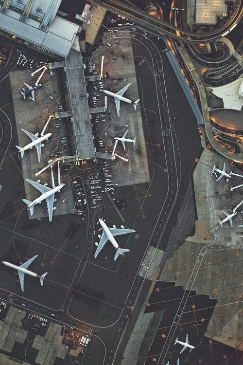 HOPEFUL WANDERING: Flighty flights