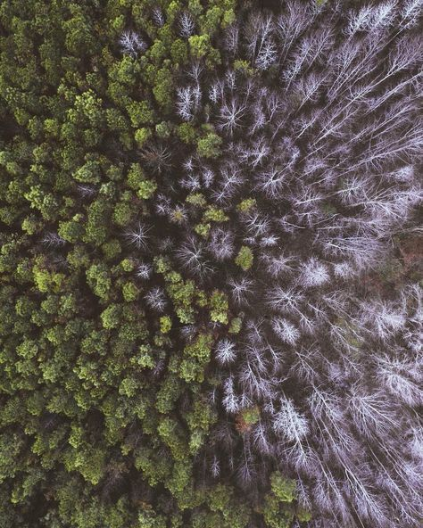 People Drone Photography : Incredible Drone Photography