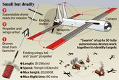 Swarms of drones 'will think for themselves'