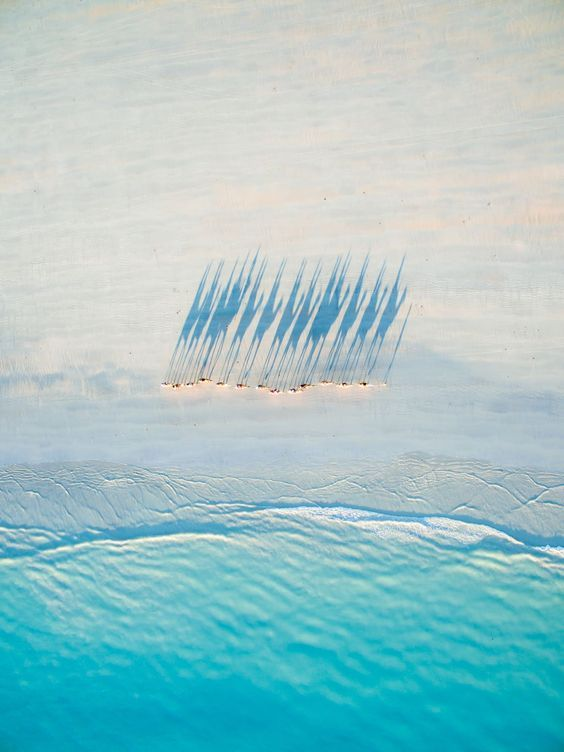 The most jaw-dropping drone photography of the year, selected by National Geographic