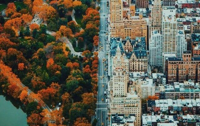People Drone Photography : The hard line between the city and nature should be further explored to form a symbiosis amid healthy life and urban development. - DronesRate.com | Your N°1 Source for Drone Industry News & Inspiration