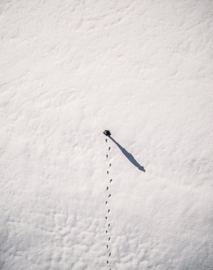 Photo: Winter Canvas